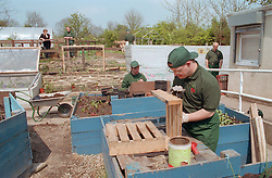 Allotment community project for adults with Downs Syndrome,