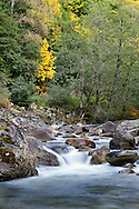 Fall colours at Silverhope creek in Silver Lake Provincial Park near Hope, British Columbia, Canada
