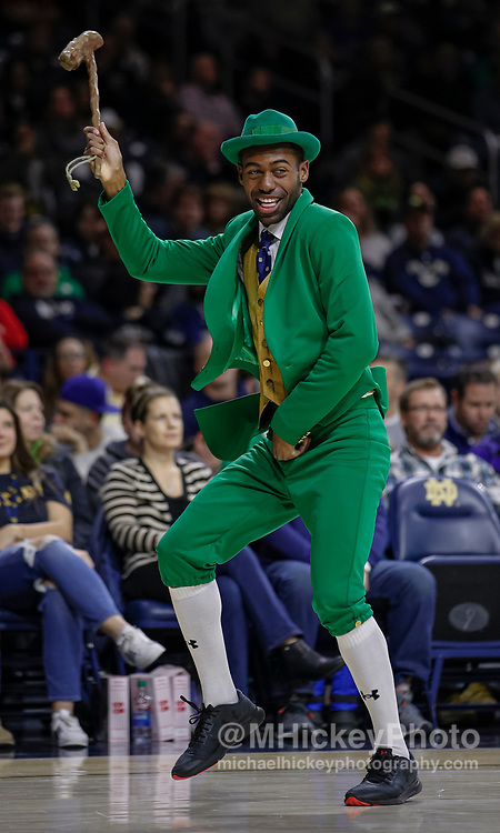 SOUTH BEND, IN - JANUARY 22: The Notre Dame Fighting Irish mascot is seen during the game against the Syracuse Orange at Purcell Pavilion on January 22, 2020 in South Bend, Indiana. (Photo by Michael Hickey/Getty Images)
