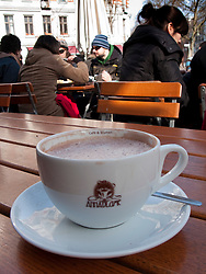 Detail of cup of hot chocolate at Anne Blume cafe in bohemian Prenzlauer Berg district of Berlin Germany 2009