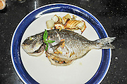 a plate with a Grilled fish with garlic