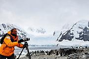 Nature photographer documenting wildlife in Antarctica