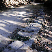 Remains of Roman road near Puerto de Bejar in Salamanca province, Spain . The WAY OF SAINT JAMES or CAMINO DE SANTIAGO following the Silver Way, between Seville and Astorga, SPAIN. Tradition says that the body and head of St. James, after his execution circa. 44 AD, was taken by boat from Jerusalem to Santiago de Compostela. The Cathedral built to keep the remains has long been regarded as important as Rome and Jerusalem in terms of Christian religious significance, a site worthy to be a pilgrimage destination for over a thousand years. In addition to people undertaking a religious pilgrimage, there are many travellers and hikers who nowadays walk the route for non-religious reasons: travel, sport, or simply the challenge of weeks of walking in a foreign land. In Spain there are many different paths to reach Santiago. The three main ones are the French, the Silver and the Coastal or Northern Way. The pilgrimage was named one of UNESCO's World Heritage Sites in 1993. When there is a Holy Compostellan Year (whenever July 25 falls on a Sunday; the next will be 2010) the Galician government's Xacobeo tourism campaign is unleashed once more. Last Compostellan year was 2004 and the number of pilgrims increased to almost 200.000 people.