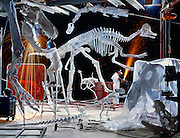 A collection of Canadian and Chinese dinosaurs discovered over five years of expeditions, is prepared for a traveling show.  Ex Terra Dinosaur Workshop, Drumheller, Alberta.