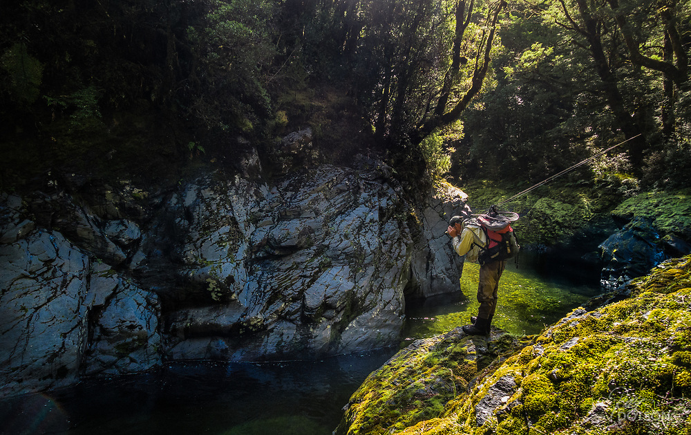 Spotting fish in deep dark gorge in remote South Island river--NZ