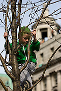 Boy with green hair in a tree tree on O'Connell St, Dublin, St. Patrick's Day, 2009