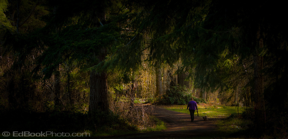 a woman walks her dog on a lane in a coniferous forest on Kamilche Point at the southern end of Puget Sound in Washington state, USA panorama