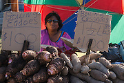 Fruit & vegetable vendor<br /> Georgetown<br /> GUYANA<br /> South America