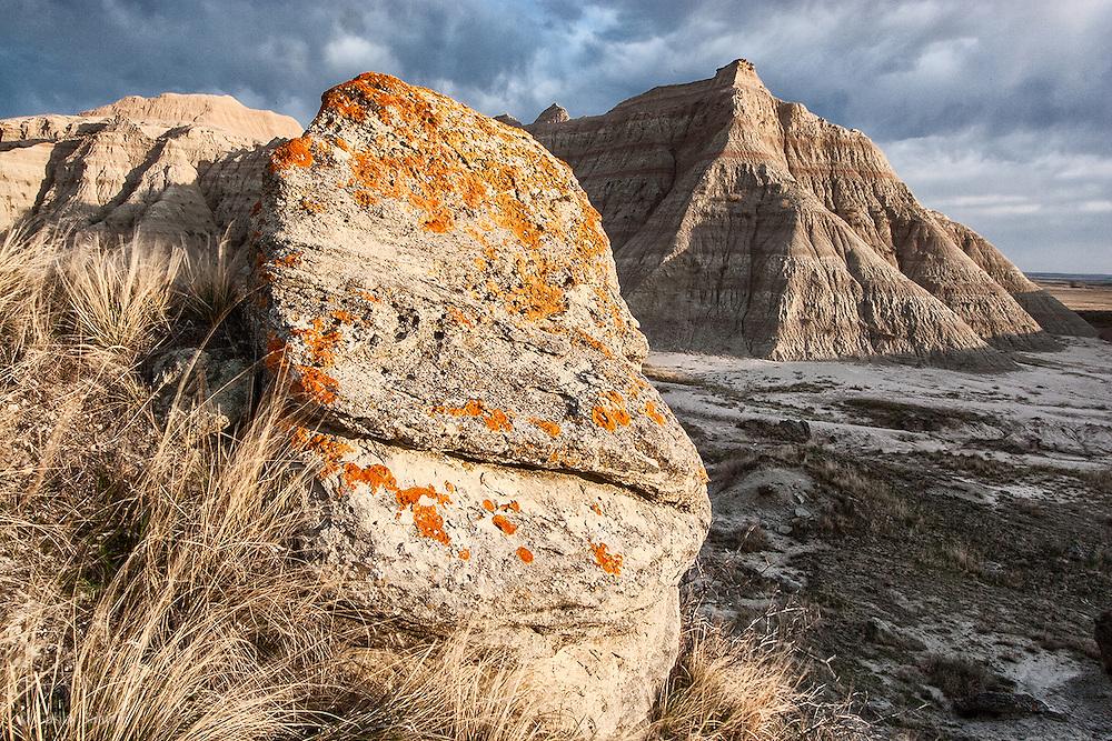 Lichen on rock, Badlands National Park, South Dakota