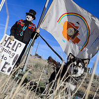 032415       Cable Hoover<br /> <br /> Nicole Walker and her dog Coda stand on the shoulder of N.M. 264 in Yatahey as they prepare to march  to Window Rock to raise awareness about domestic violence Tuesday.
