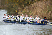 Crew: 203   Op 8+ BAND-5   East Anglia, University of, Boat Club   UEA-Tomsett<br /> <br /> Wallingford Head 2017<br /> <br /> To purchase this photo, or to see pricing information for Prints and Downloads, click the blue 'Add to Cart' button at the top-right of the page.