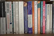 Modern novels on a bookshelf