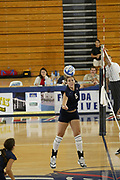 FAU VOLLEYBALL vs Bethune Cookman College, August 26, 2005.