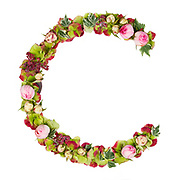 Capital Letter C Part of a set of letters, Numbers and symbols of the Alphabet made with flowers, branches and leaves on white background