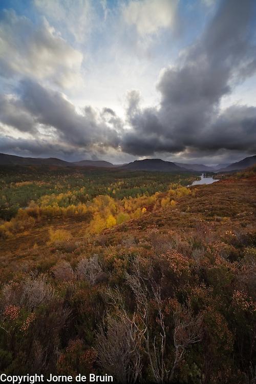 A view over Glen Affric in autumn, Scotland.