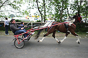 The Appleby horse fair is the largest Gypsy and Travellers horse fair in the UK. Tens of thousand of Travellers come from all over the UK and Ireland every year to trade horses and meet up with friends and family in Appleby on the first weekend of June