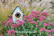 63821-22406 Birdhouse in garden with Autumn Joy Stonecrop (Sedum spectabile 'Autumn Joy') and Fountain Grass (Pennisetum setaceum) Marion Co., IL