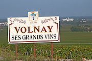Vineyard. volnay. Burgundy, France