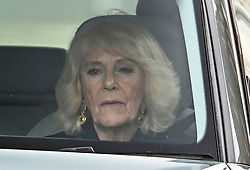 © Licensed to London News Pictures. 08/03/2021. London, UK. CAMILLA, DUCHESS OF CORNWALL is seen being driven through central London, following the release of an interview with Prince Harry, Duke of Sussex and his wife Meghan, Duchess of Sussex. The two hour event, hosted by Oprah Winfrey, aired in the early hours of the morning in the UK. Photo credit: Ben Cawthra/LNP
