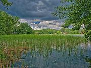 Jezioro Studzieniczne koło Augustowa.
