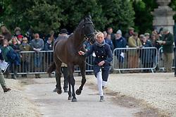 Clark Aoife, (IRL), Vaguely North<br /> First Horse Inspection - Mitsubishi Motors Badminton Horse Trials <br /> Badminton 2015