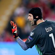 Czech Republic's goalkeeper Petr Cech during their UEFA Euro 2016 qualification Group A soccer match Turkey betwen Czech Republic at Sukru Saracoglu stadium in Istanbul October 10, 2014. Photo by Aykut AKICI/TURKPIX