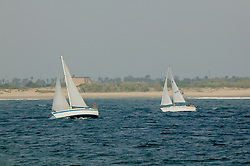 Sailboats