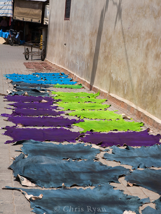 Dyed skins in the sun, Marrakesh, Morocco