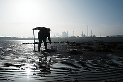 © Licensed to London News Pictures. 13/03/2014<br /> <br /> South Gare, Teesside, England, UK<br /> <br /> A fisherman digs for bait at low tide in an area known as South Gare at the mouth of the River Tees on Teesside.<br /> <br /> Photo credit : Ian Forsyth/LNP