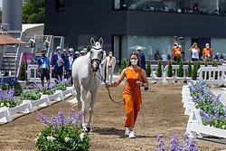 Boonzaaijer Janneke, NED, Champ de Tailleur, 252<br /> Olympic Games Tokyo 2021<br /> © Hippo Foto - Dirk Caremans<br /> 29/07/2021