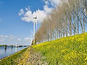 Windturbine lansg het Hartelkanaal 's bij Europoort, Rotterdam. - Wind turbine along the Hartelkanaal near Europort, Rotterdam, Netherlands