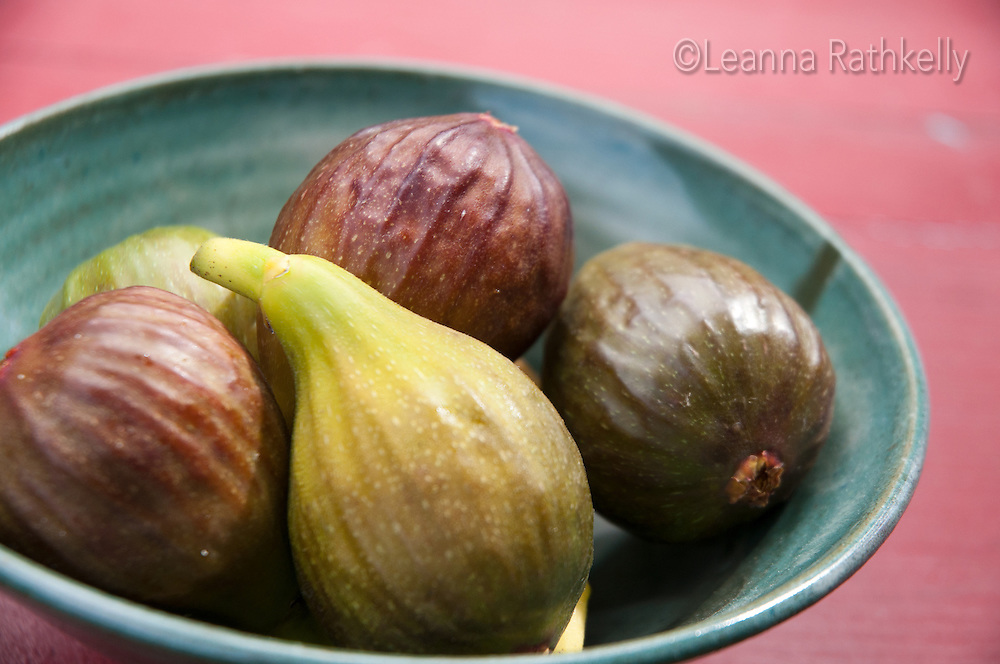Figs grow abundantly in Victoria, BC