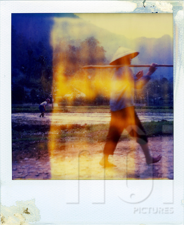 A vietnamese farmer goes off the field with a spade on his shoulder and a conic hat on his head. Northern Vietnam, asia. The polaroid is really outdated and present a yellow trace on its surface.