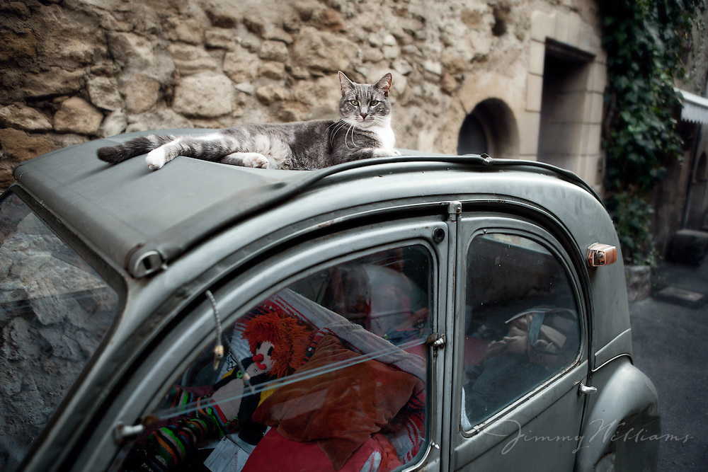 A cat rests on top of an old car in Lourmarin, France
