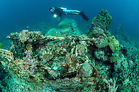 A Diver inspects the remnants of a Japanese Zero fighter plane downed in World War II<br /> <br /> Shot in Indonesia