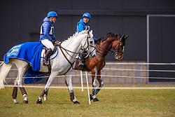 Pen Elaine, NED, Shady Grey, De Jong Sanne, NED, Hatary Mbf<br /> Grandorse Horse Trials - Kroneneberg 2019<br /> © Hippo Foto - Dirk Caremans<br /> 05/05/2019