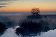 Misty morning ground fog over pond at sunrise in winter, Merced National Wildlife Refuge, Central Valley, California