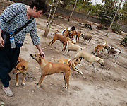 Jennifer Holmes greets one of the hundreds of dogs at the Yangon Animal Shelter, Myanmar.