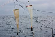 North Atlantic Ocean, September 2014.<br /> 200micron neuston nets plankton tows are trawls used to gather samples on board the Sea Dragon. © Chiara Marina Grioni