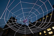 Web of Light, an illuminated installation by the Chinese-born artist Ai Weiwei which features a giant spider in its web suspended from buildings in Exchange Flags in the centre of Liverpool. The installation, made of light tubes and glass beads, is part of the 2008 Liverpool Biennial, the UK's largest contemporary international arts festival which commences on September 20 and runs until the end of November. Liverpool was also 2008 European Capital of Culture.