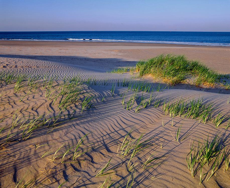 Dunes, beach grass & ripple patterns, Atlantic surf, Hampton Beach State Park, Hampton Beach, NH
