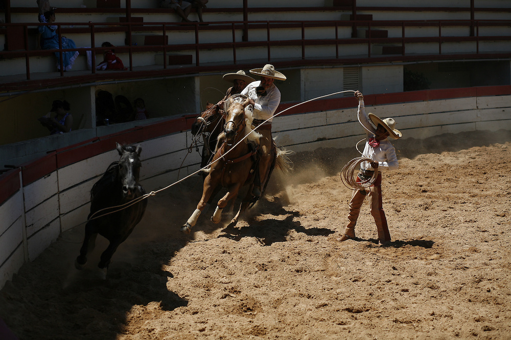 Victoriano Flores, right, throws a lasso around a wild mare during the 'Mangana a Pie' at a charreada in San Antonio.  The goal of this suerte is to lasso the mare by her front legs and bring her to a stop.  Teammates ride behind the horse to keep her at a steady speed and charros earn extra points for the difficulty of the flourishes, or florins, they perform.