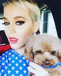 """Katy Perry releases a photo on Instagram with the following caption: """"periodt. #voting"""". Photo Credit: Instagram *** No USA Distribution *** For Editorial Use Only *** Not to be Published in Books or Photo Books ***  Please note: Fees charged by the agency are for the agency's services only, and do not, nor are they intended to, convey to the user any ownership of Copyright or License in the material. The agency does not claim any ownership including but not limited to Copyright or License in the attached material. By publishing this material you expressly agree to indemnify and to hold the agency and its directors, shareholders and employees harmless from any loss, claims, damages, demands, expenses (including legal fees), or any causes of action or allegation against the agency arising out of or connected in any way with publication of the material."""