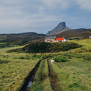 I had already been marvelling from afar at the dramatic geological feature of An Sgurr on Eigg from the beginning of my Inner Hebrides journey. It's sticks up so abruptly like an axehead that has sliced through the island. It was formed 58.72 ± 0.07 million years ago; the result of one of the last eruptions of a volcano, the core of which now forms the Isle of Rhum. Thick viscous pitchstone lava of rhyodacitic composition flowed out, filling a river valley. The lava cooled and formed column-like structures, similar to those at Giant's Causeway.<br /> The surrounding basalt was softer than the pitchstone, and hence the valley became inverted, with the pitchstone withstanding the erosion far better than the surrounding rock. An Sgùrr is thus an inselberg. The mountain appears most strikingly in the view of the eastern end, known as the Nose of Sgùrr.<br /> I couldn't wait to hike up to the top to take in the breathtaking views that I anticipated. This is a view of a farm along the path, with An Sgurr rising abruptly in the distance like the dorsal fin of a gigantic whale. It was a wonderful hike and the views along the way and from the top certainly didn't disappoint! Looking down the sheer precipitous wall overlooking the sea was particularly dizzying. It would have been the perfect geological feature for constructing the ultimate unassailable castle on top of had anyone been that ambitious.