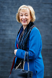 © Licensed to London News Pictures. 29/03/2017. London, UK. Environment Secretary ANDREA LEADSOM attends a cabinet meeting in Downing Street, London on Wednesday, 29 March 2017 as Prime Minister Theresa May triggers article 50 and starts Britain's departure from the European Union. Photo credit: Tolga Akmen/LNP