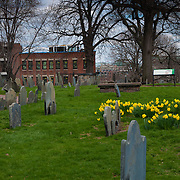 Copp's Hill Burying Ground in spring, North End, Boston, MA