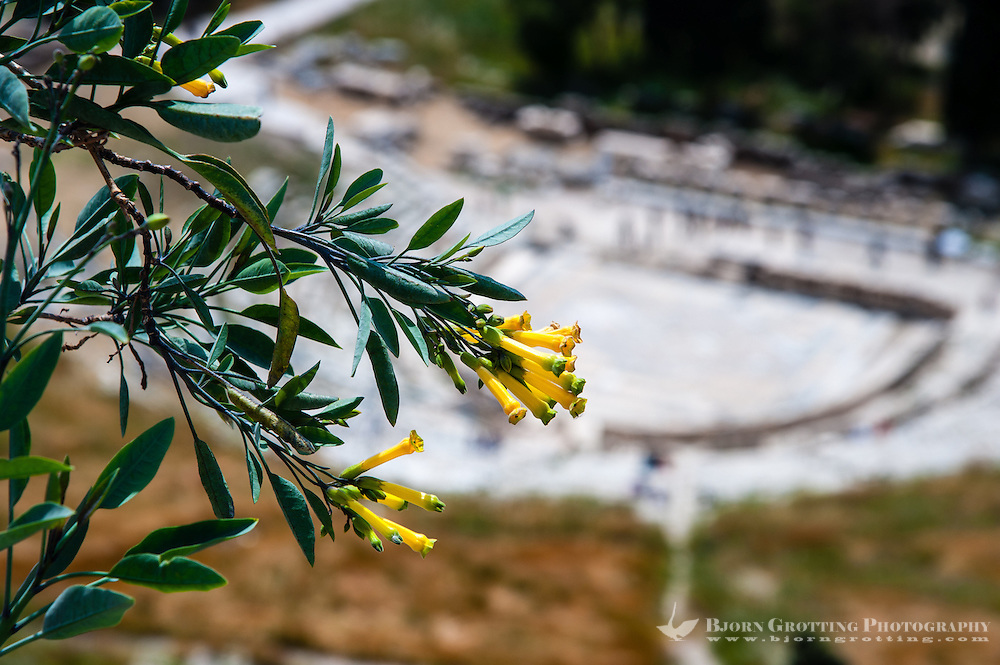 Greece, Athens. The Acropolis with several famous ancient strucures. The Theatre of Dionysus Eleuthereus.