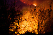 The forrest burning on several mountains, on tuesday, aug. 28, 2007. Pelleponnes.
