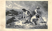 Making bread during the Neolithic Age according to the French illustrator Emile Bayard (1837-1891), illustration Artwork published in Primitive Man by Louis Figuier (1819-1894), Published in London by Chapman and Hall 193 Piccadilly in 1870
