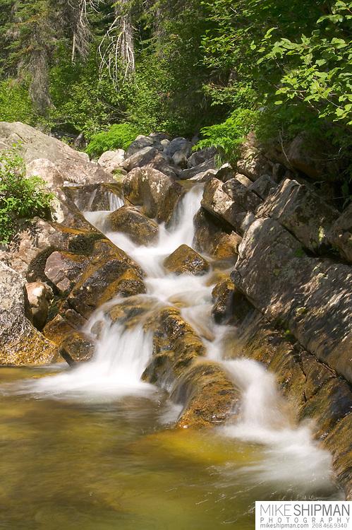 Idaho, Valley County, Small falls on N Fork Lake Fork Creek along Lick Creek Road 48